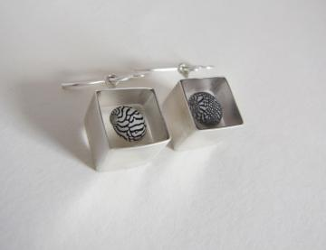 Ear Rings Silver & Zebra Shells